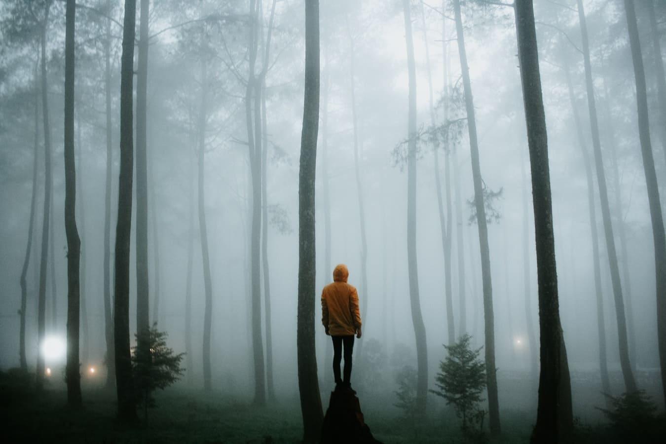 夢を追う人生を送りたい人が知っておいてほしいこと
