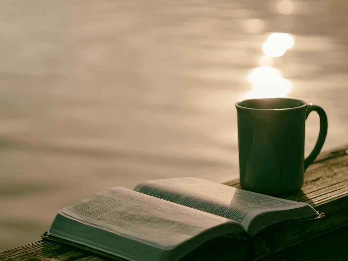 読みたい本がわからない人、すぐ飽きてしまう人の場合